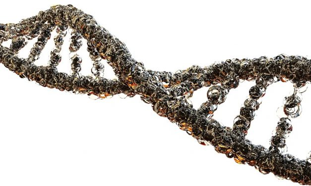 Can Blockchain Look Into Our Genes to Find Cures?
